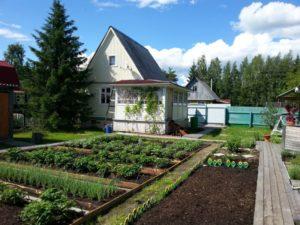 В Брянской области дачи выросли в цене на 9,7%