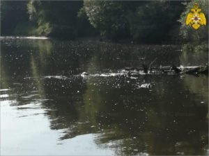 Брянские спасатели достали из Десны тело тридцатого утонувшего с начала лета
