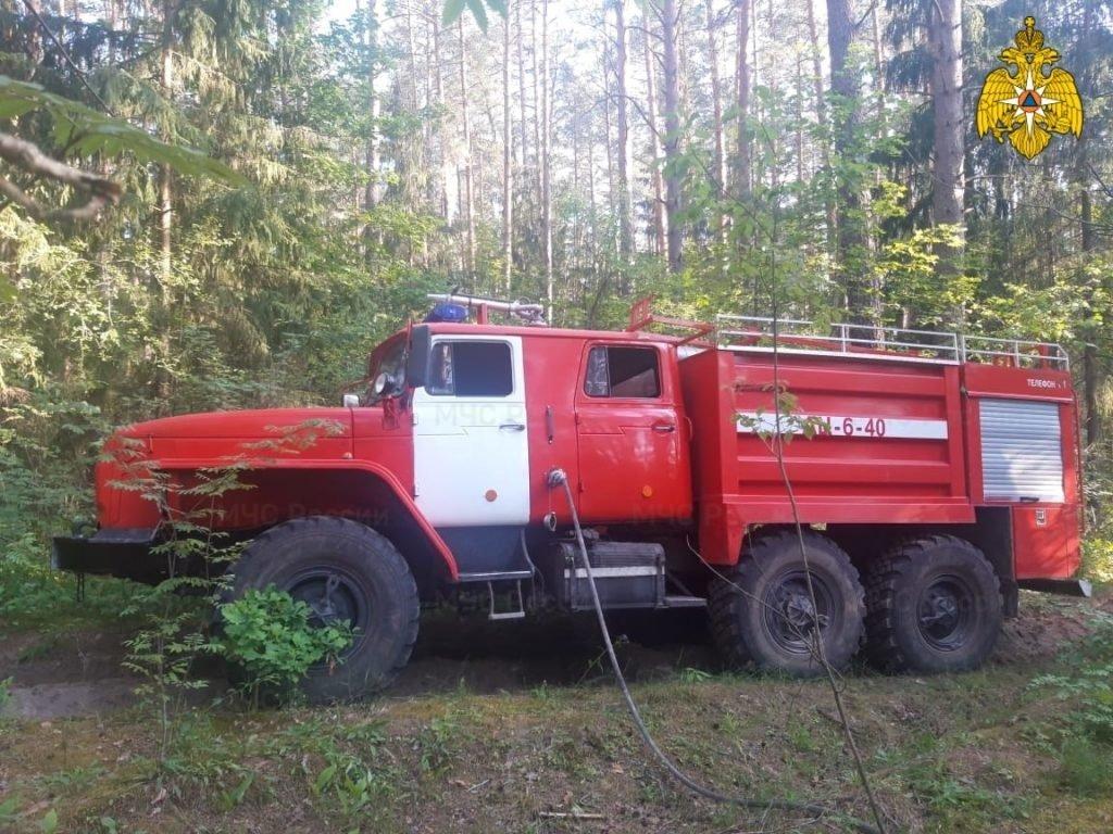 Под Радицей-Крыловкой вовремя потушили лесной пожар