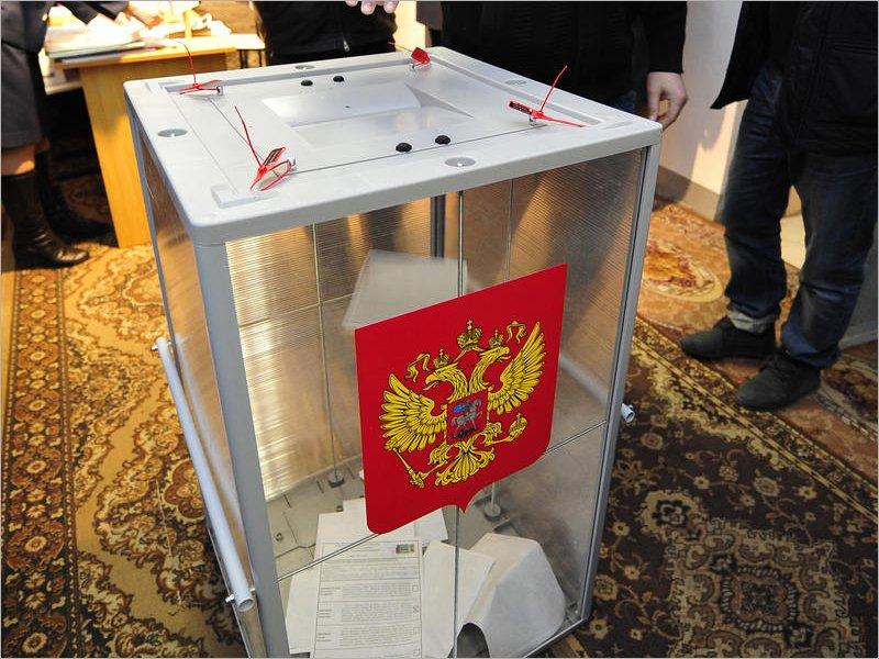 Центризбирком обработал ровно половину протоколов на выборах в Госдуму