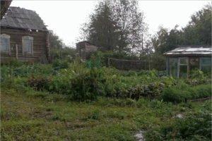 Съёмочная группа фильма «Огород» переехала из Курской области в Брянскую