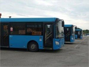 Божия роса: директор брянского ПАТП считает, что транспортная реформа идёт успешно, а зарплата водителей – 50 тысяч рублей