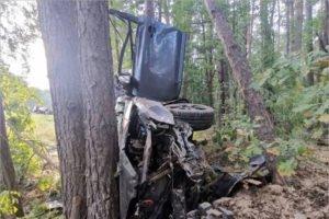 На местной дороге под Климово влетел в дерево и погиб водитель