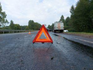 В лобовом ДТП с лесовозом в Брянской области погибли водитель легковушки без прав и его 22-летняя пассажирка