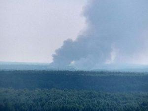 В Новозыбковском округе предотвратили лесной пожар