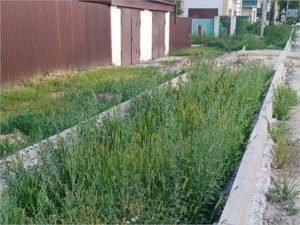 Недоделанные улицы: количество отремонтированных дорог в Брянске сильно отличается от заявленного