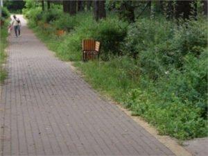 В Навле завершено благоустройство парка вокруг братской могилы воинов-освободителей