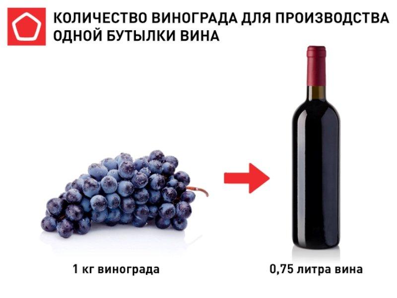 В России к ноябрю может сильно подорожать вино – не менее, чем на 30%