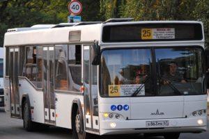 Для Брянска закупили 32 автобуса МАЗ-103
