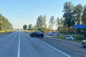 В Брянской области в массовом ДТП под Навлей погиб стоявший на обочине водитель, две пассажирки госпитализированы