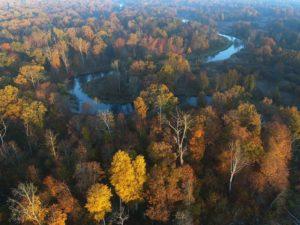 В Брянской области 22 сентября завершается пожароопасный сезон