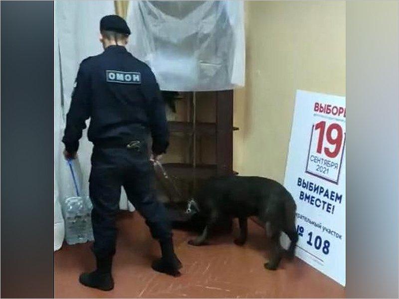 Выборы в Брянской области охраняют более 300 росгвардейцев