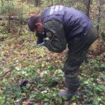Брянские следователи проводят проверку по телу, обнаруженному грибниками под Карачевом