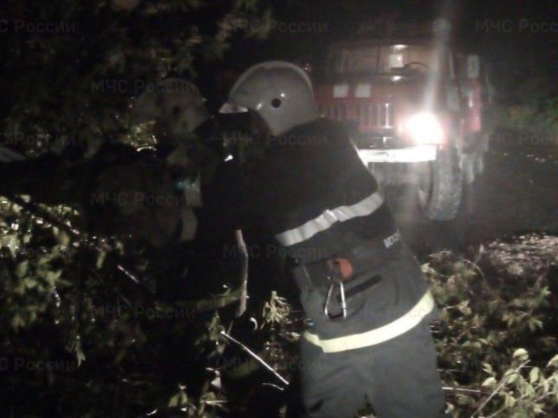Суражские спасатели пилили дерево, чтобы доставить пациентку в больницу
