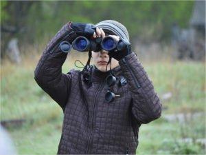 Брянские наблюдатели отчитались о 57 видах птиц, виденных в регионе