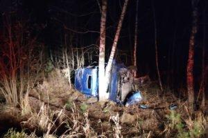 Новая авария на трубчевской трассе: фургон улетел в дерево, водитель сломал шею