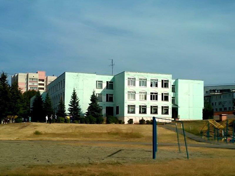 В гимназии №3 Брянска введен карантин из-за массового отравления детей