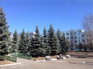 Отравление брянских гимназистов взял на контроль руководитель СК РФ
