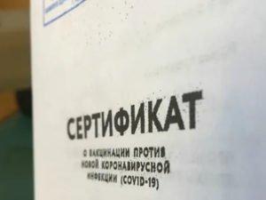 Минздрав показал новый сертификат о вакцинации от COVID-19