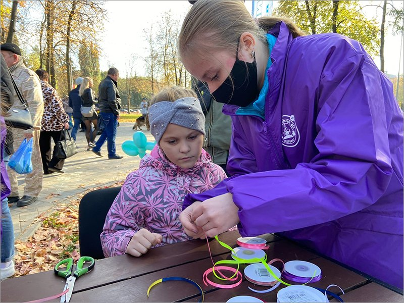 Брянский парк стал площадкой для добровольческого фестиваля